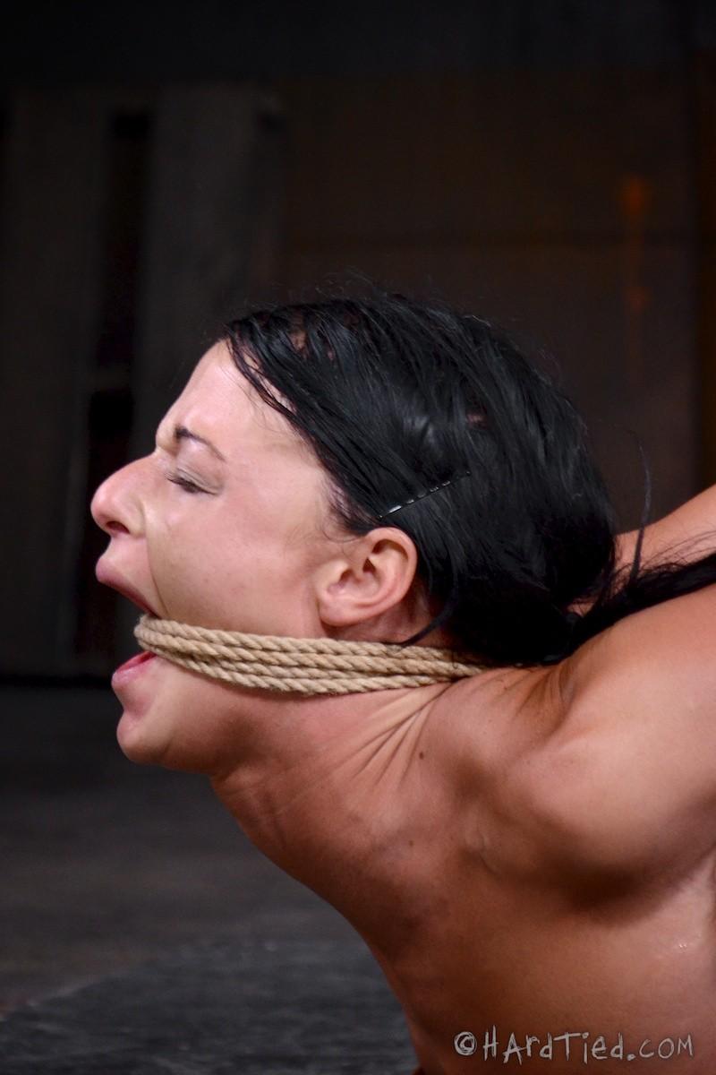 Брюнетку связывают в немыслимых позах, поэтому при виде ее хочется только одного – жестко отжарить ее во все дырки
